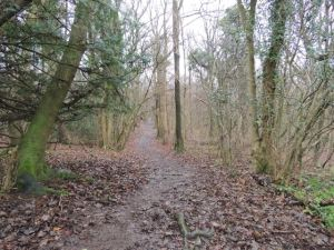 Path up to Knott