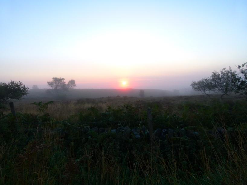 Derbyshire 1