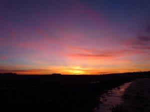 dawn 050