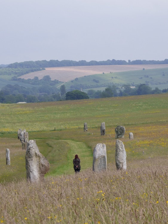 Avebury, the Avenue. Image S. Vincent