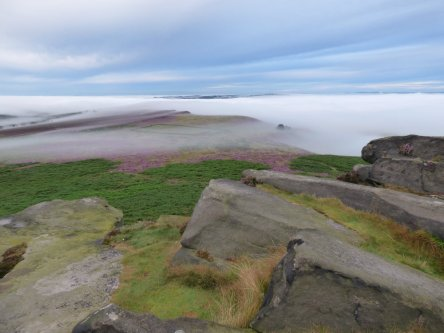 heather 2015 derbyshire, higger tor, beeley circle, edensor, bak 045