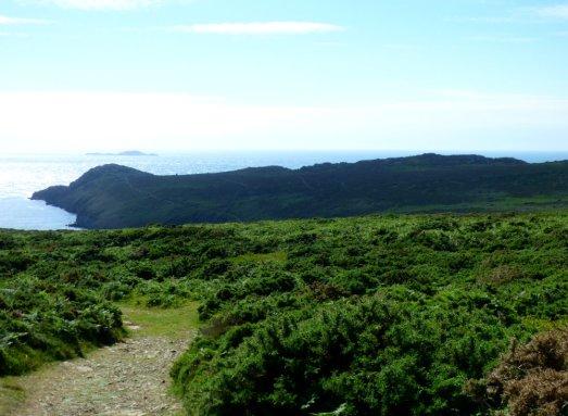Wales 275