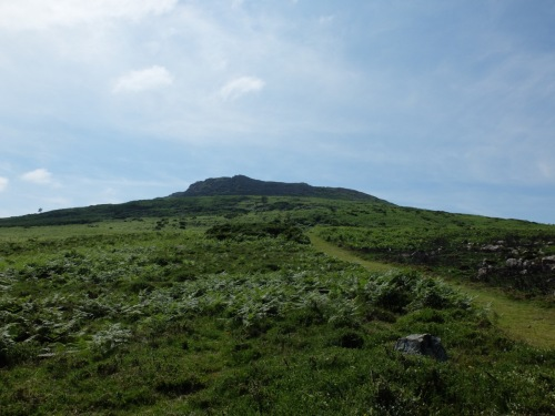 Whispers in West Two Carn Ingli - 1 (12)