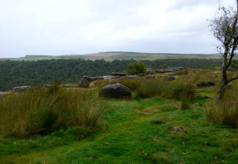 derbyshire-heather-gardoms-carl-wark-moon-134