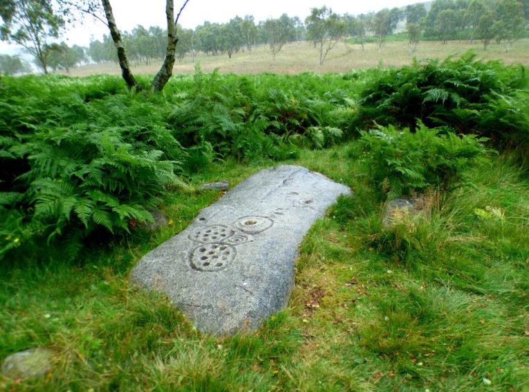 derbyshire-heather-gardoms-carl-wark-moon-173