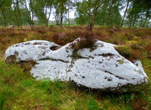derbyshire-heather-gardoms-carl-wark-moon-177