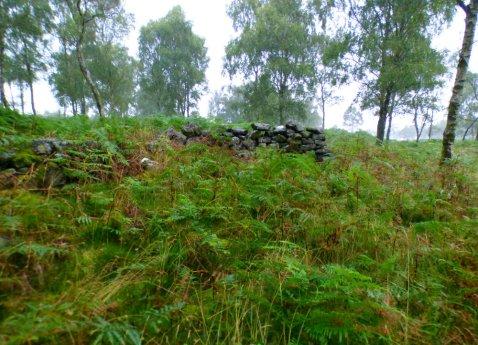 derbyshire-heather-gardoms-carl-wark-moon-185