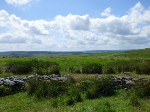 snake-adder-barbrook-merin-stone-beeley-derbyshire-ani-130