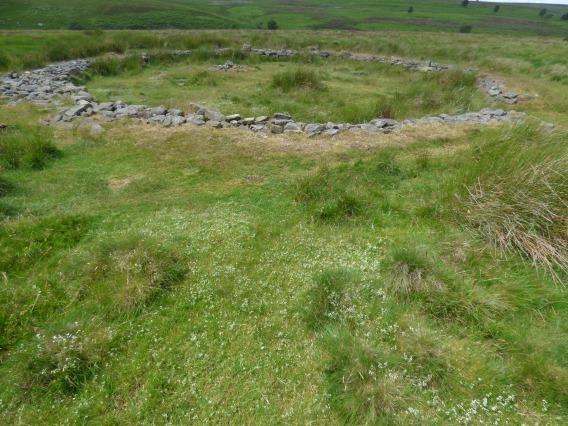 snake-adder-barbrook-merin-stone-beeley-derbyshire-ani-143