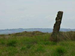 snake-adder-barbrook-merin-stone-beeley-derbyshire-ani-093