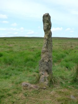 snake-adder-barbrook-merin-stone-beeley-derbyshire-ani-101