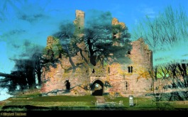 Castles of Mind tree smaller